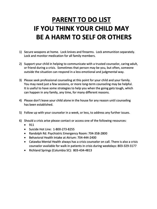Parents To Do List if Your Child May Be a Harm to Self or Others